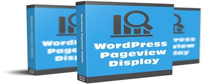pageviews1